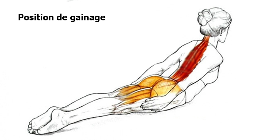 posture-gainage-muscles-1